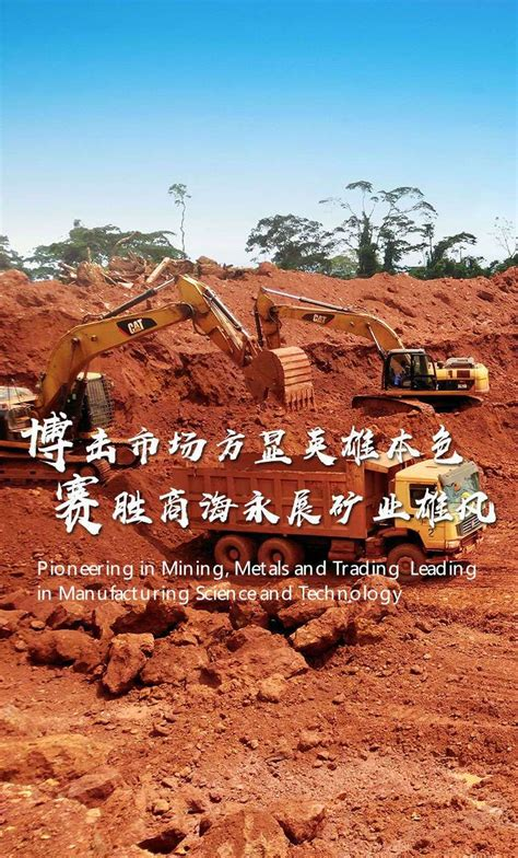 Bosai Minerals Group Co