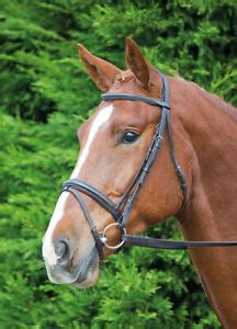 Shires Aviemore Comfort Fit Bridle | Raised Browband Flash