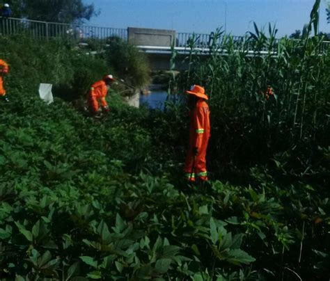 Jukskei River Clean Up Project   BRA
