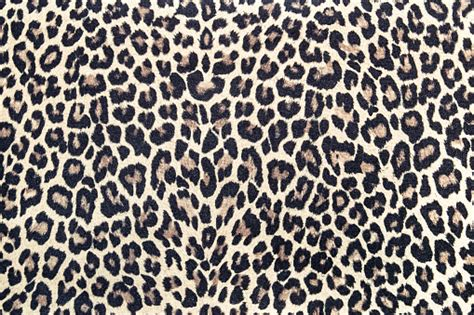 Leopard Pattern Fabric Texture Background Effect Stock